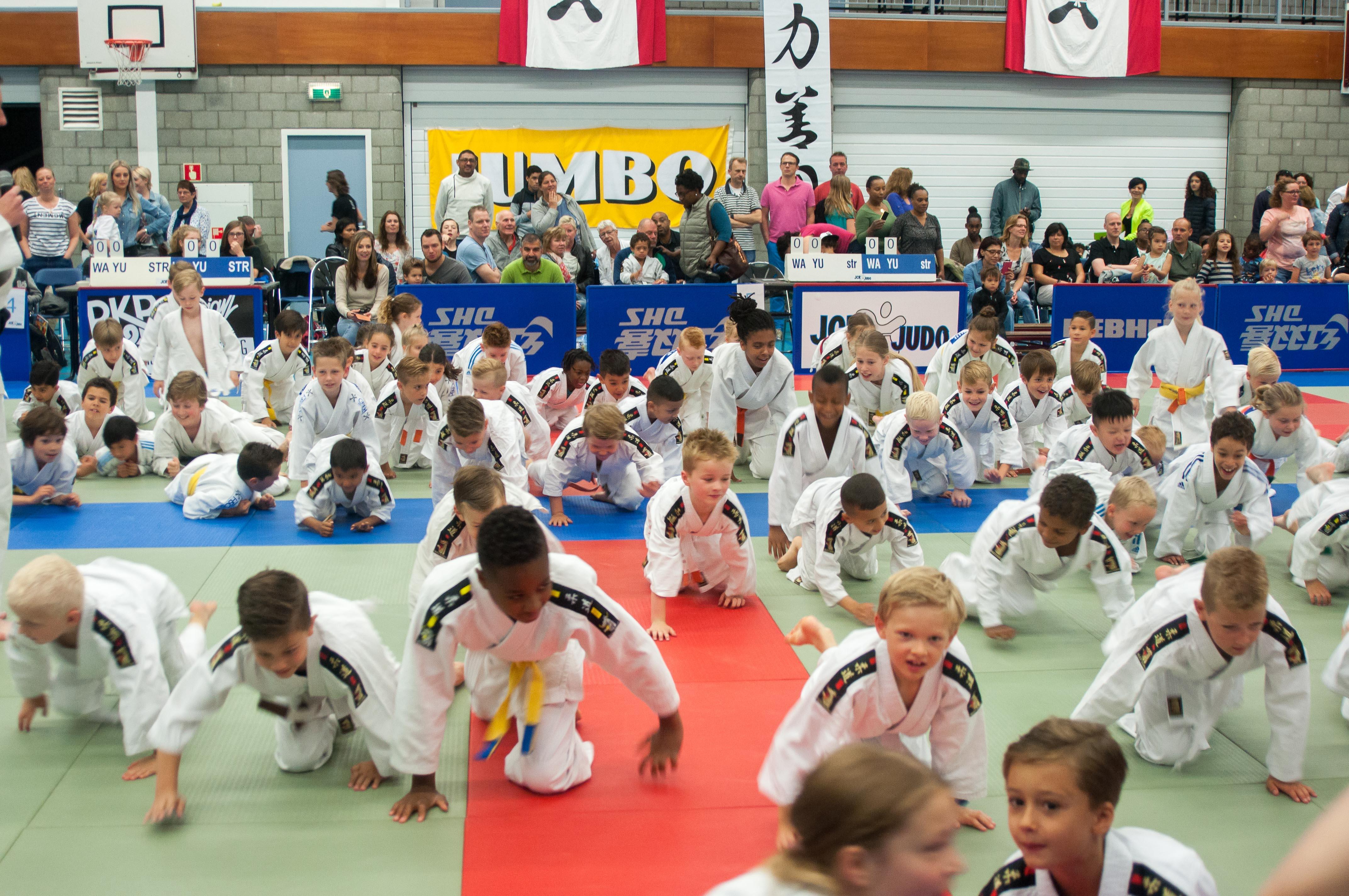 Judo ondersteund een ander sport