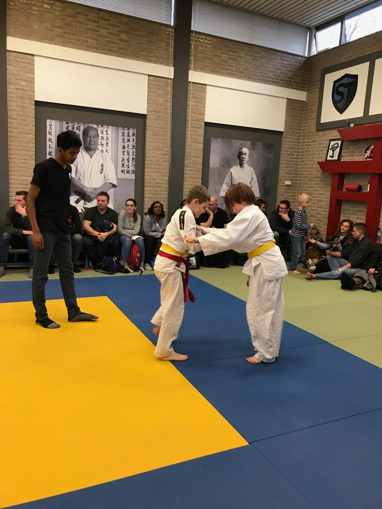 Recreatie Judo